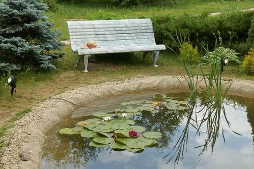 Плот на пруду